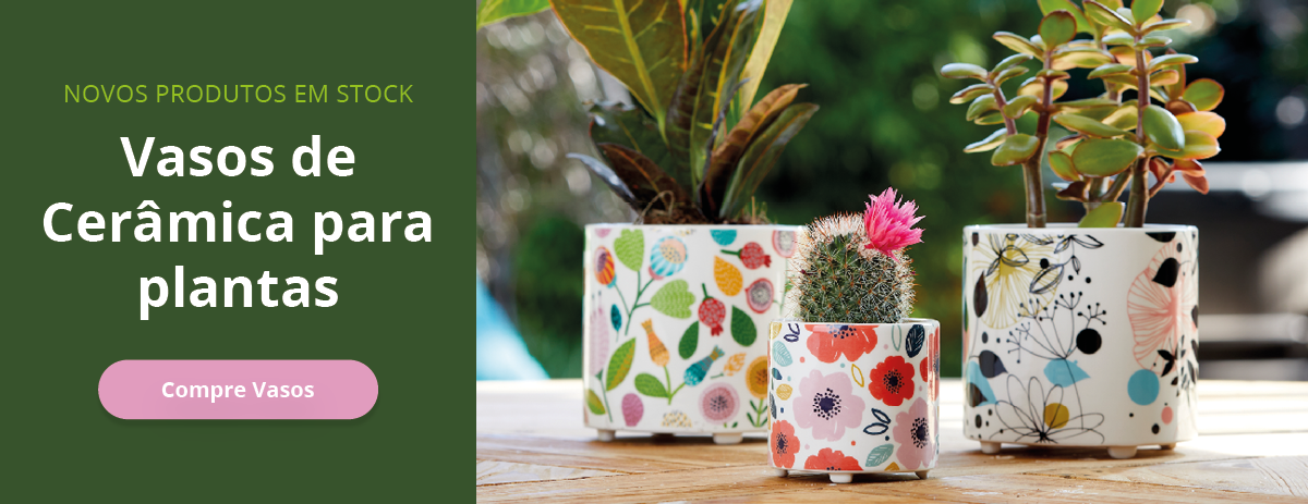Vasos de Cerâmica para Plantas